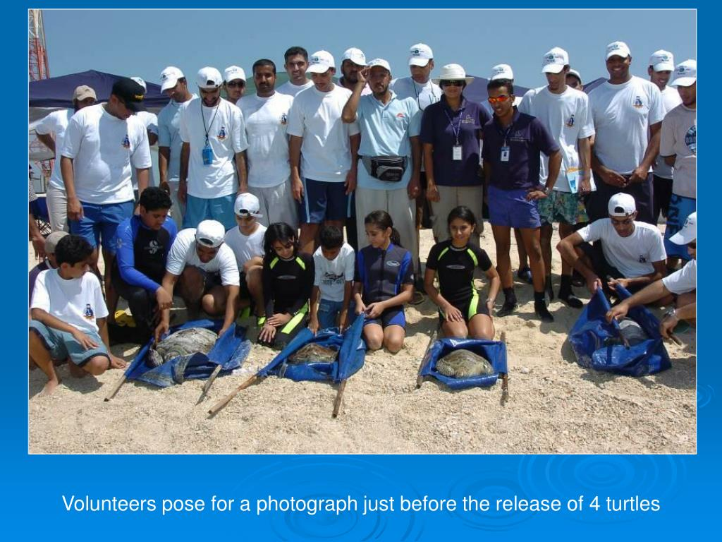 Volunteers pose for a photograph just before the release of 4 turtles