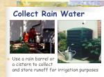collect rain water
