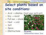 select plants based on site conditions