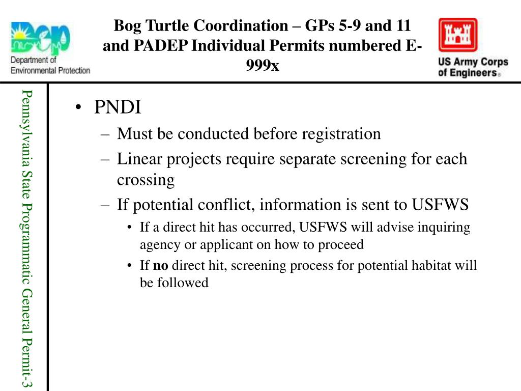 Bog Turtle Coordination – GPs 5-9 and 11 and PADEP Individual Permits numbered E-999x
