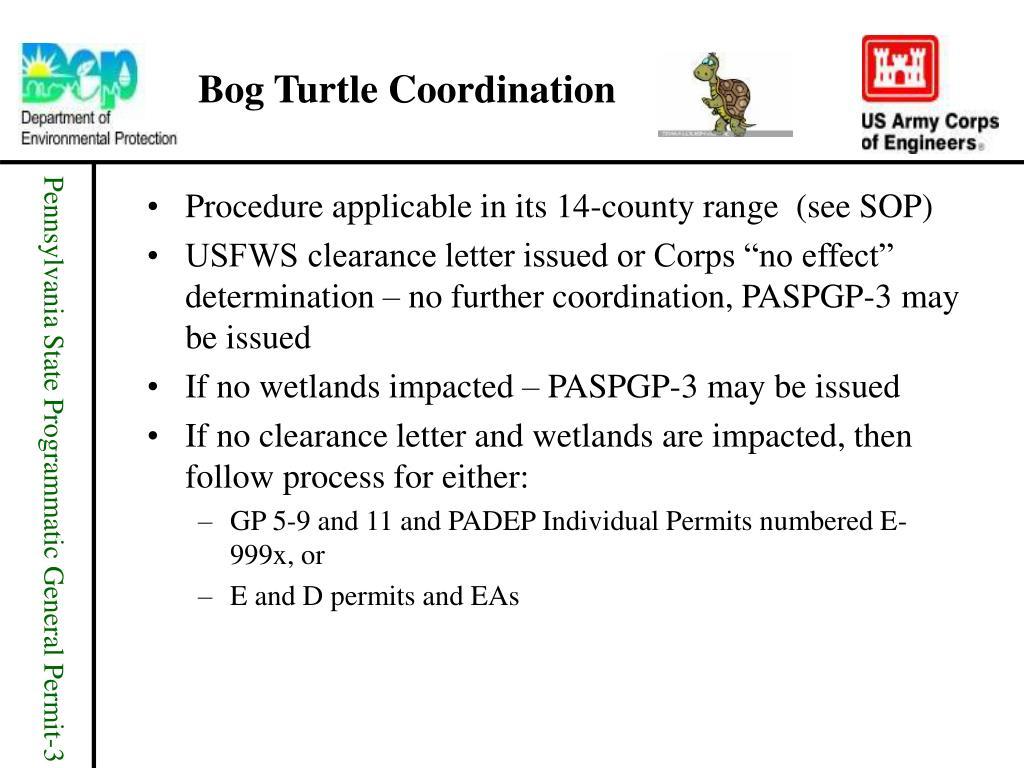 Bog Turtle Coordination
