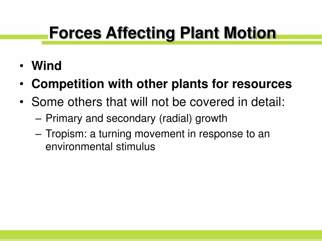 Forces Affecting Plant Motion