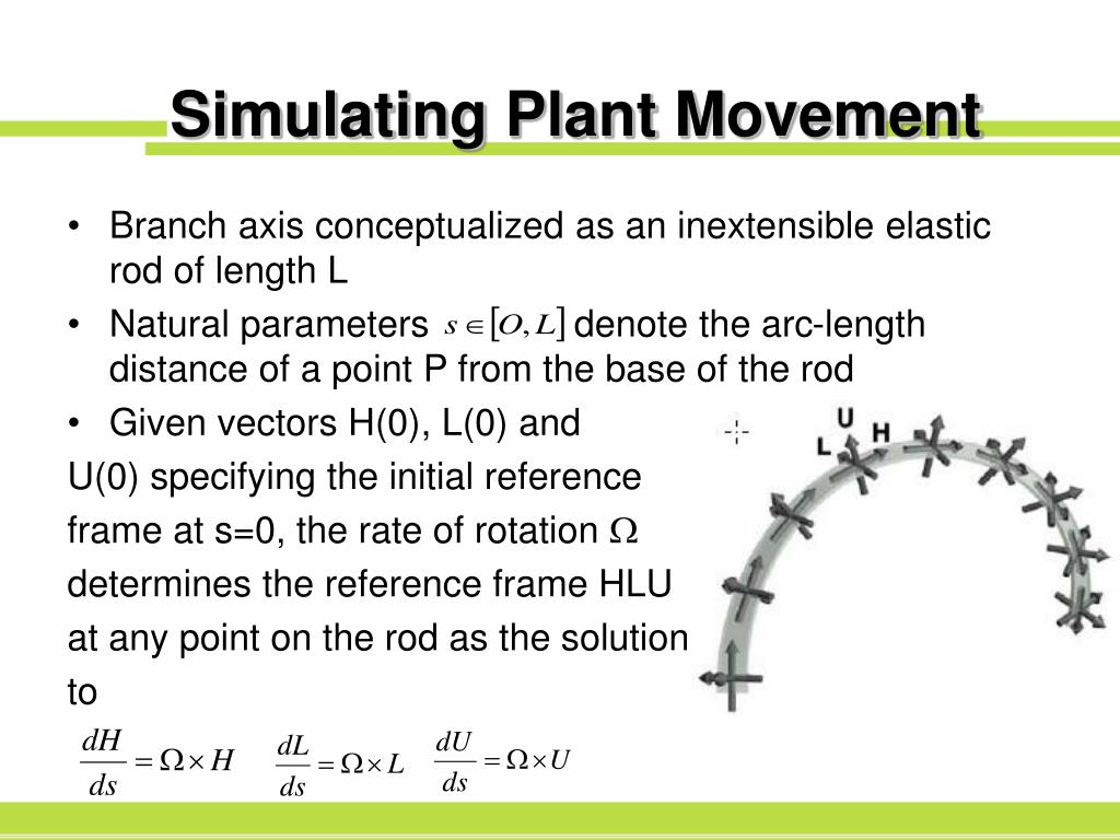 Simulating Plant Movement