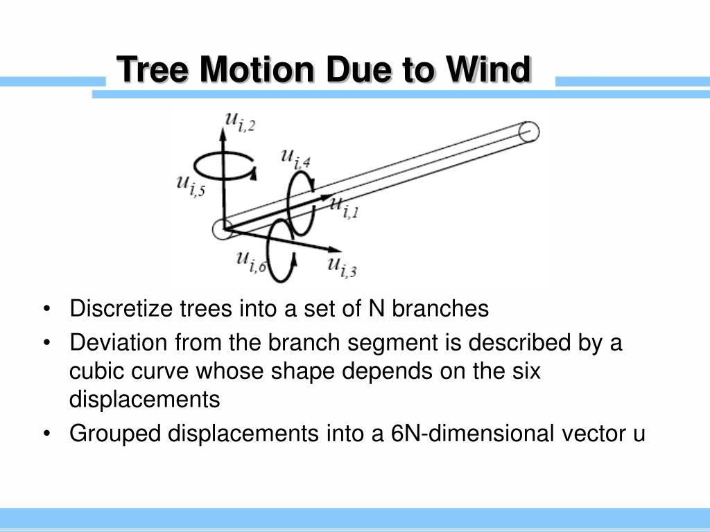 Tree Motion Due to Wind