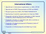 international affairs1
