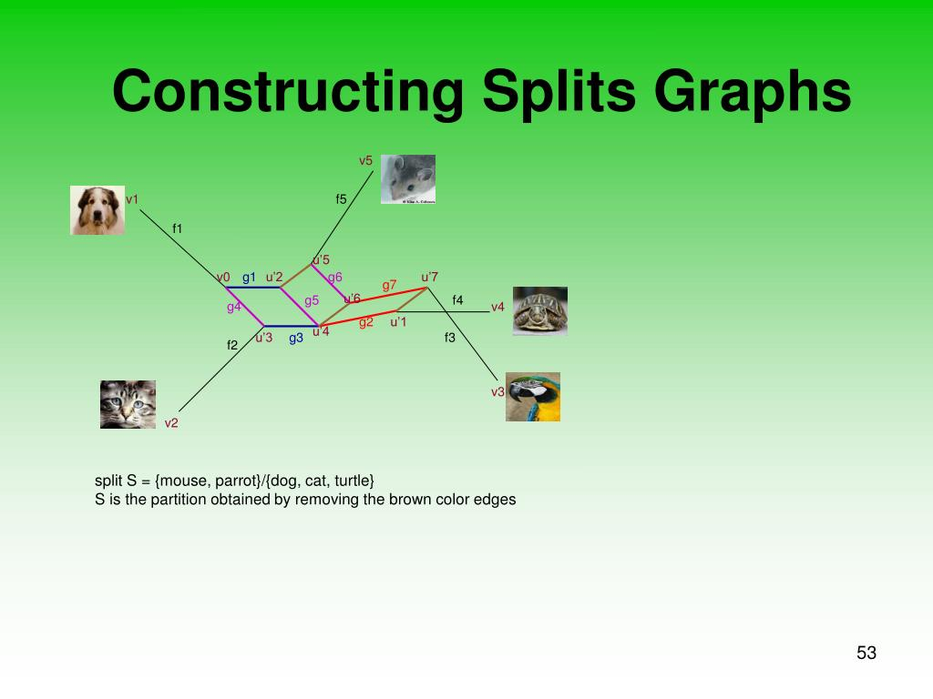 Constructing Splits Graphs