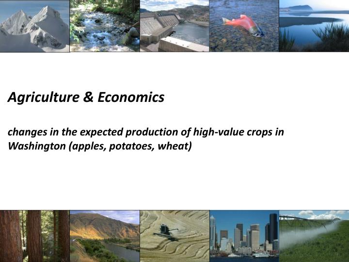 Agriculture & Economics