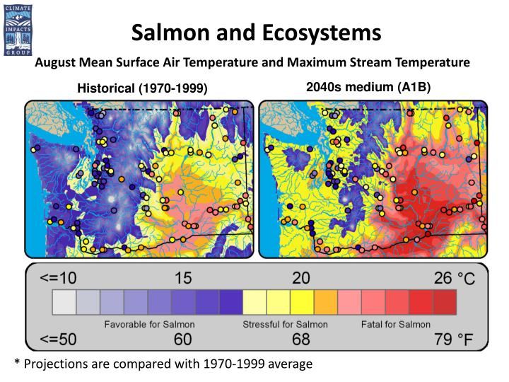 Salmon and Ecosystems