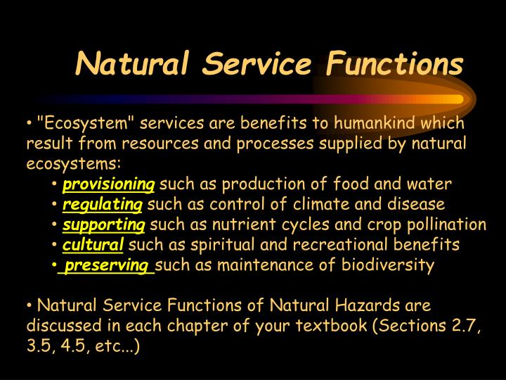 Natural Service Functions