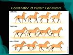 coordination of pattern generators