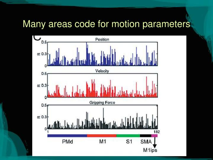 Many areas code for motion parameters