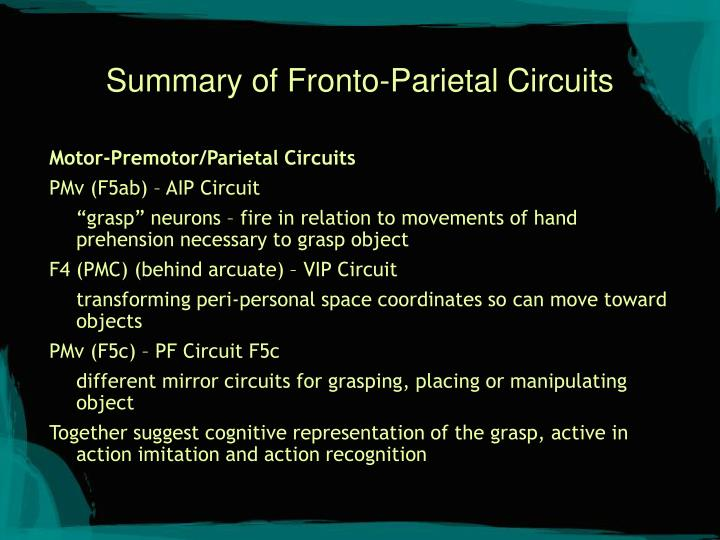 Summary of Fronto-Parietal Circuits