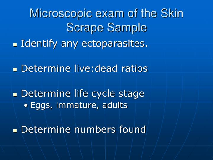 Microscopic exam of the Skin Scrape Sample