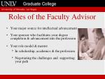 roles of the faculty advisor