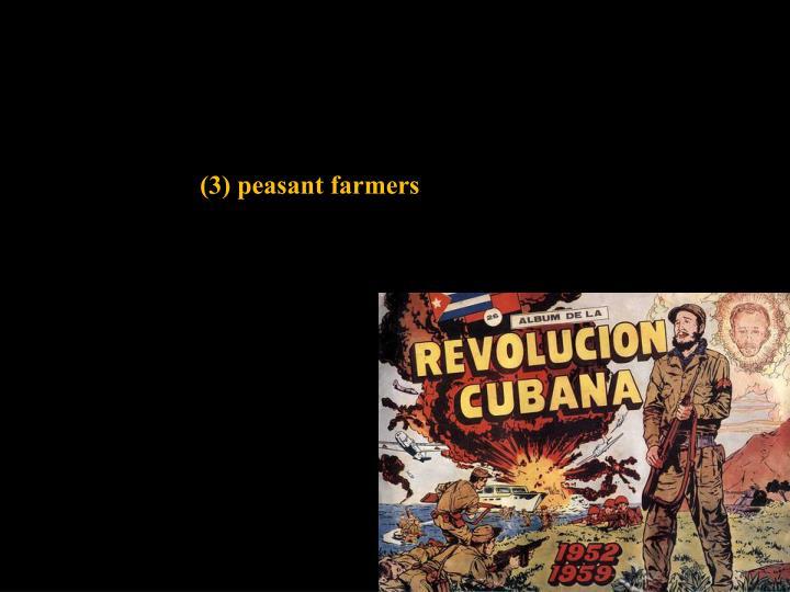 (3) peasant farmers