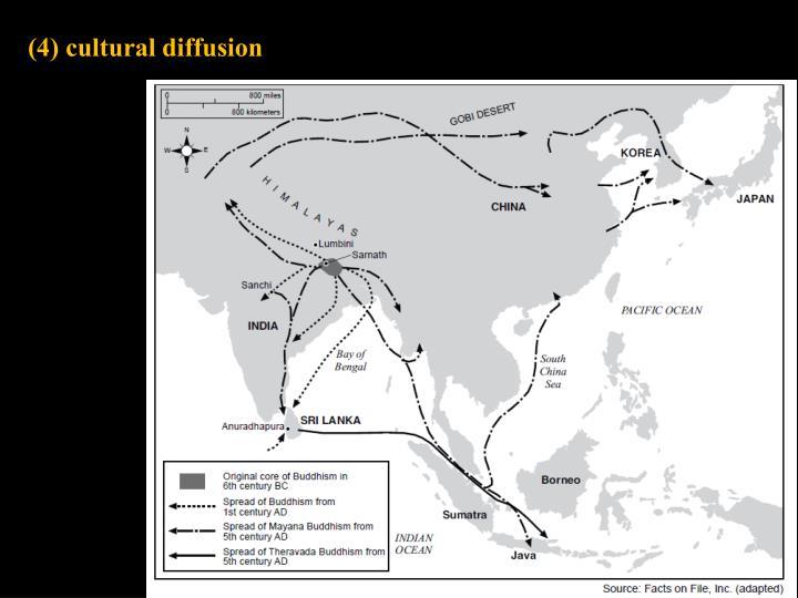 (4) cultural diffusion