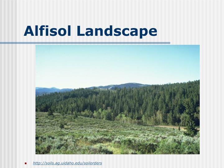 Alfisol Landscape