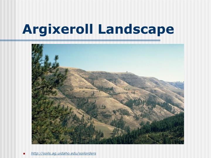 Argixeroll Landscape