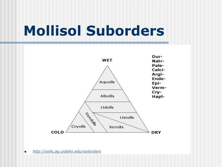 Mollisol Suborders