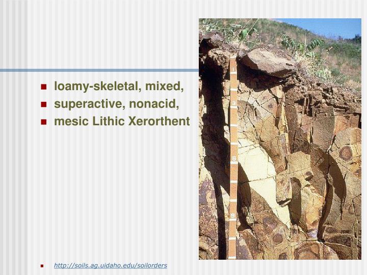 loamy-skeletal, mixed,