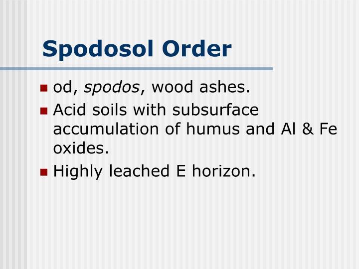 Spodosol Order