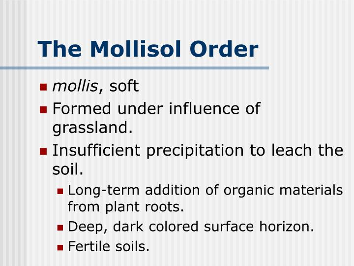 The Mollisol Order