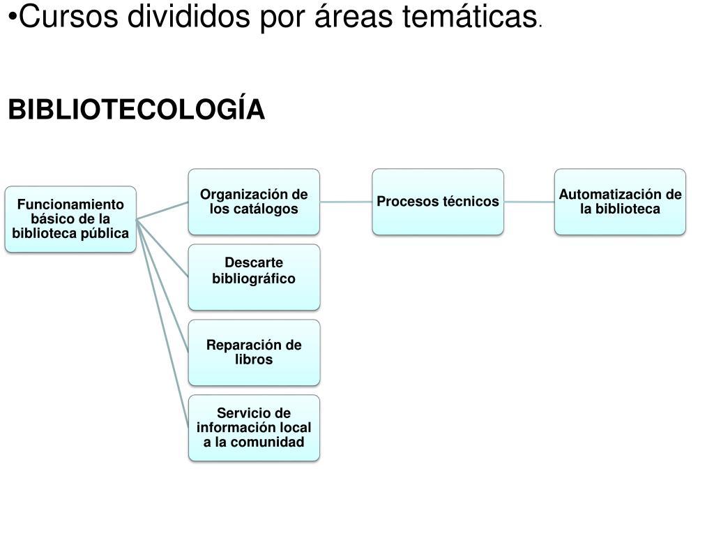 Cursos divididos por áreas temáticas