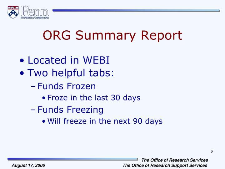 ORG Summary Report