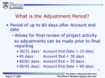 what is the adjustment period