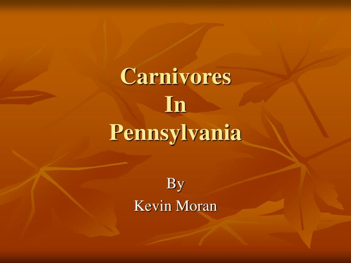 Carnivores in pennsylvania l.jpg