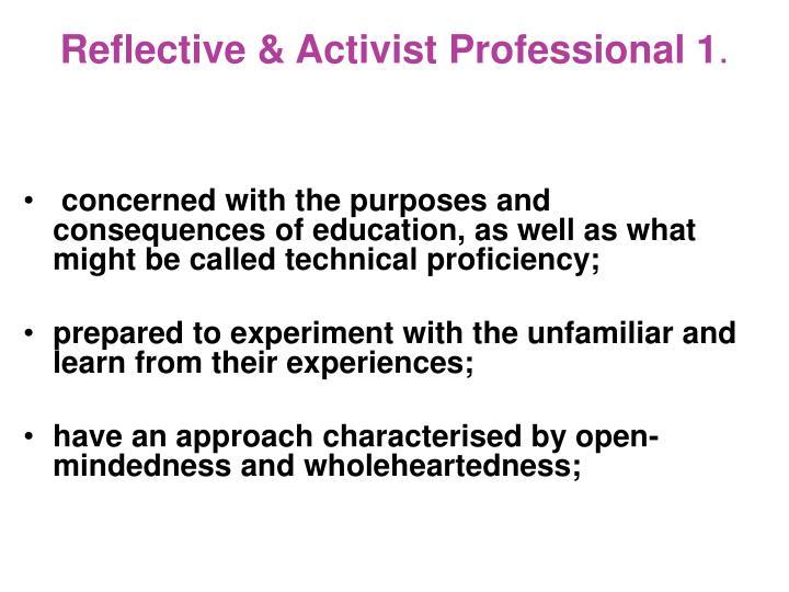 Reflective & Activist Professional 1