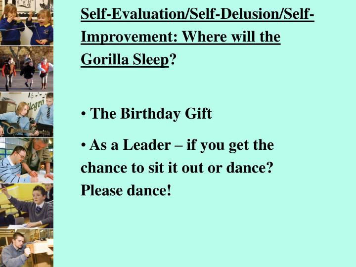 Self-Evaluation/Self-Delusion/Self-Improvement: Where will the Gorilla Sleep
