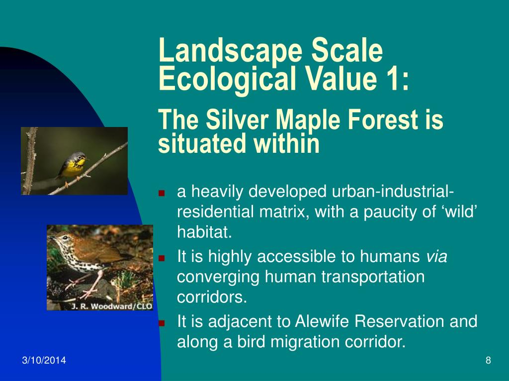 Landscape Scale Ecological Value 1:
