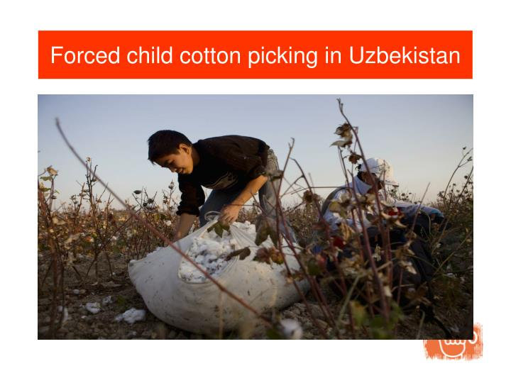 Forced child cotton picking in Uzbekistan