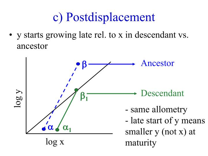 c) Postdisplacement