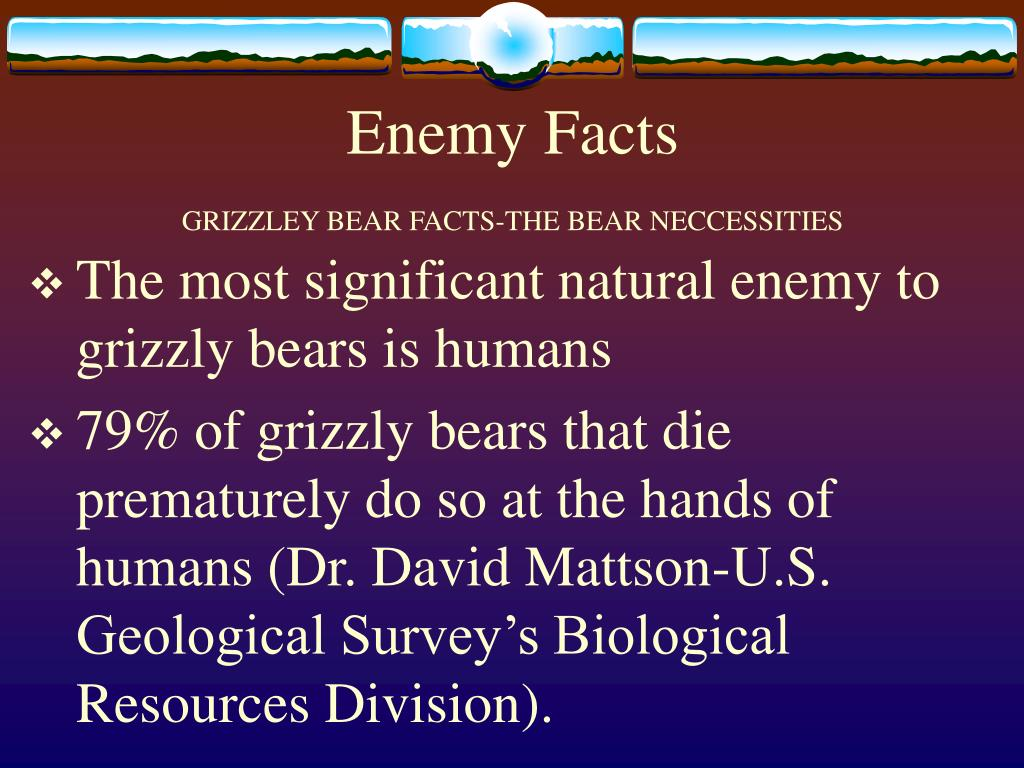 Enemy Facts