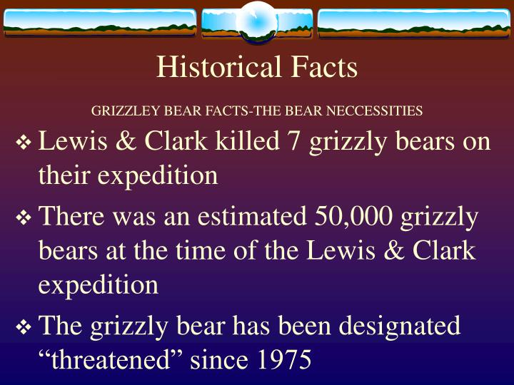 Historical facts grizzley bear facts the bear neccessities l.jpg