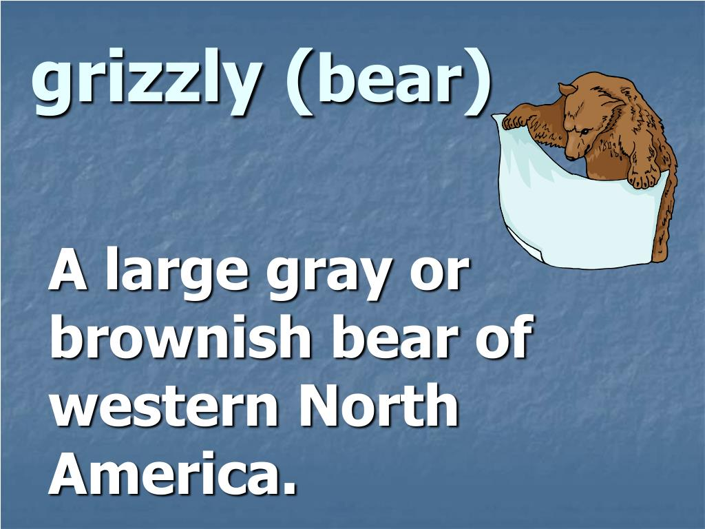grizzly (