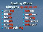 spelling words digraphs ng nk ph wh