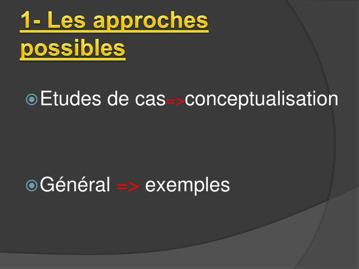 1- Les approches possibles