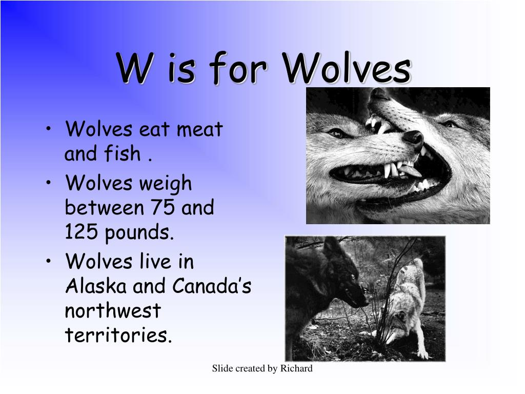 W is for Wolves