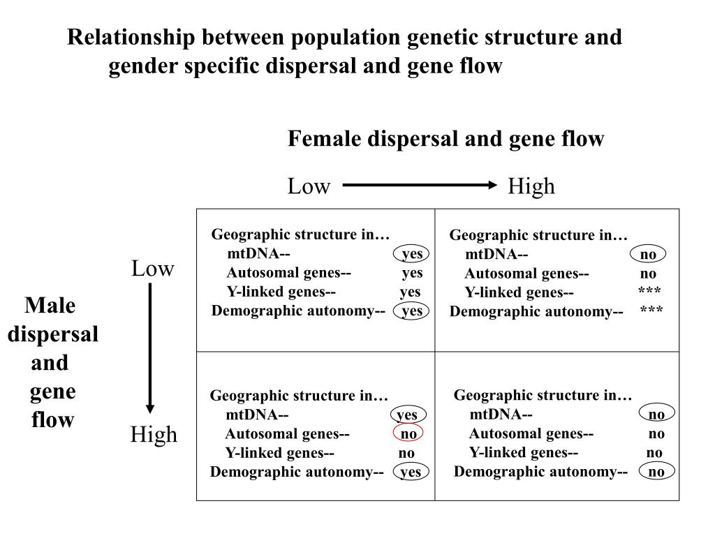 Relationship between population genetic structure and