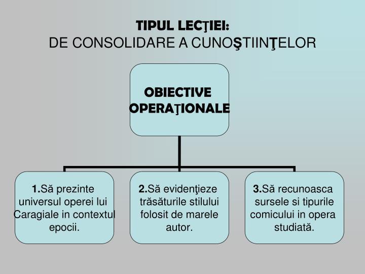 TIPUL LEC