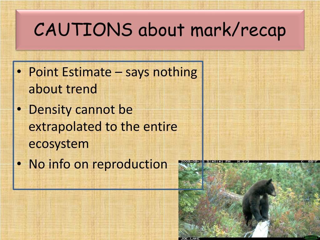 CAUTIONS about mark/recap
