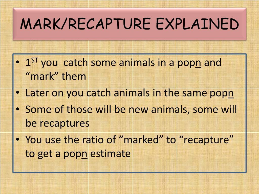 MARK/RECAPTURE EXPLAINED