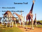 savanna trail