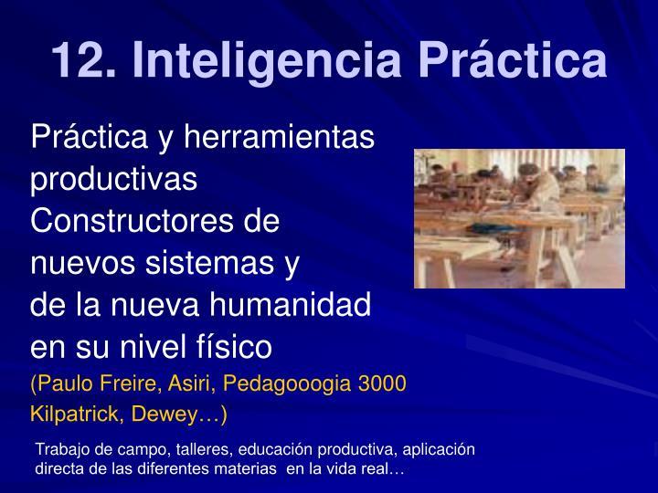 12. Inteligencia Práctica