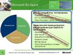 microsoft bizspark6