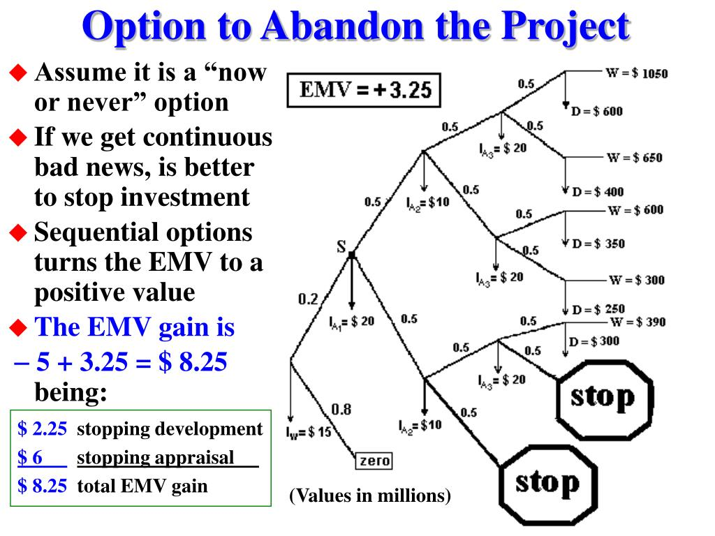 Option to Abandon the Project
