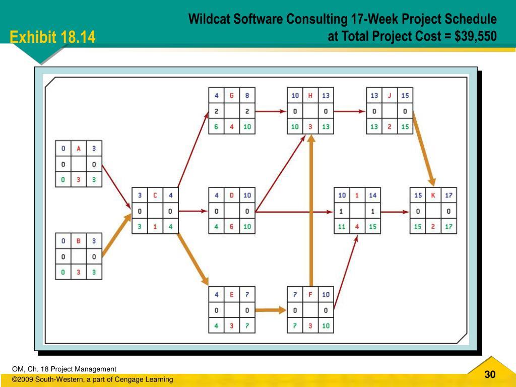 Wildcat Software Consulting 17-Week Project Schedule